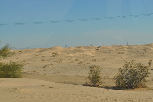 Sand dunes just west of Winterhaven